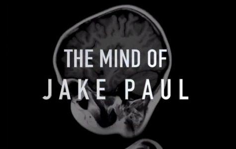 Jake Paul Exposed