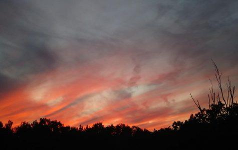 Sunset on a Summer Online