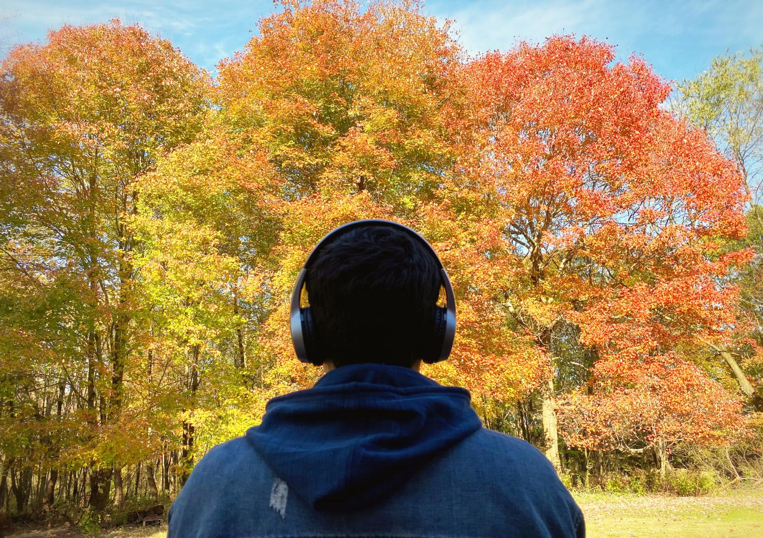 Podcasts are now so plentiful and popular that there's likely a series to suit any listener's tastes.