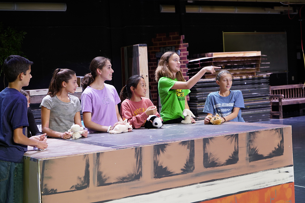 A Preview of the Middle School Musical