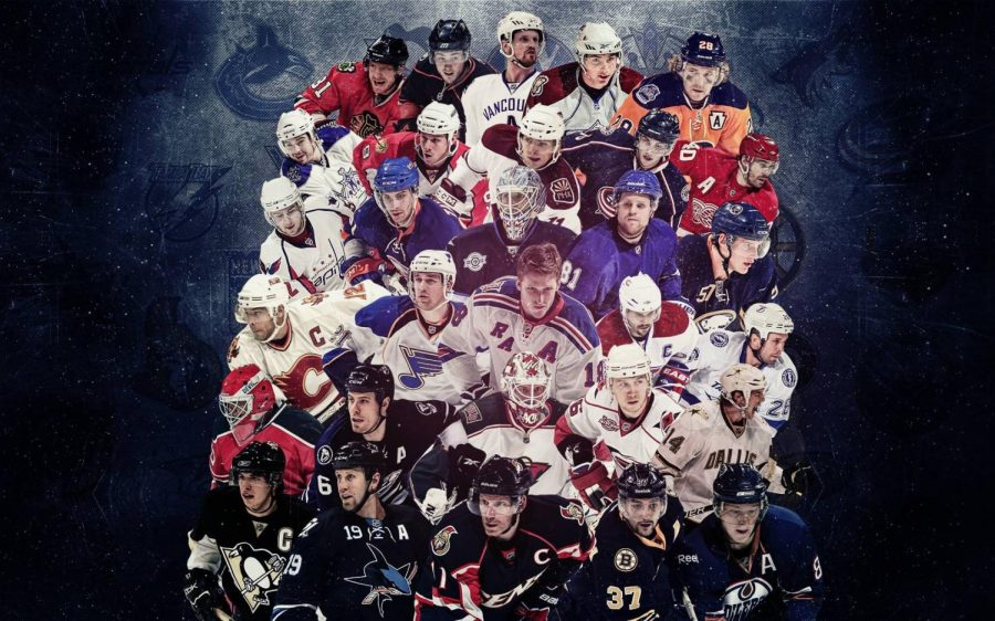 This Season's Top 10 Hockey Players