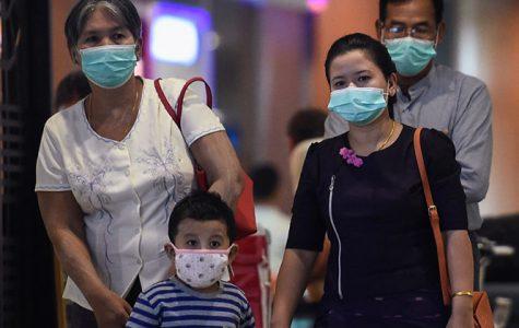 The Toll of the Coronavirus