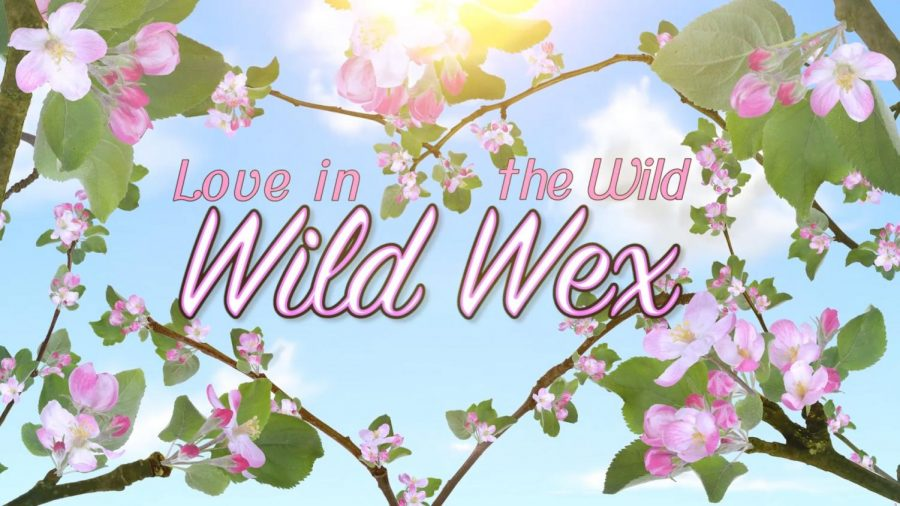 Love in the Wild Wild Wex