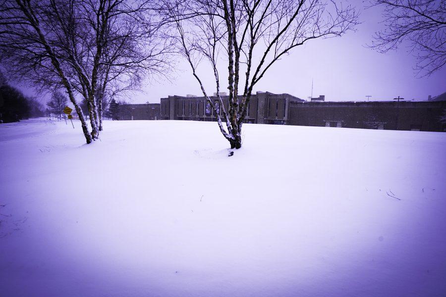 nash snow day