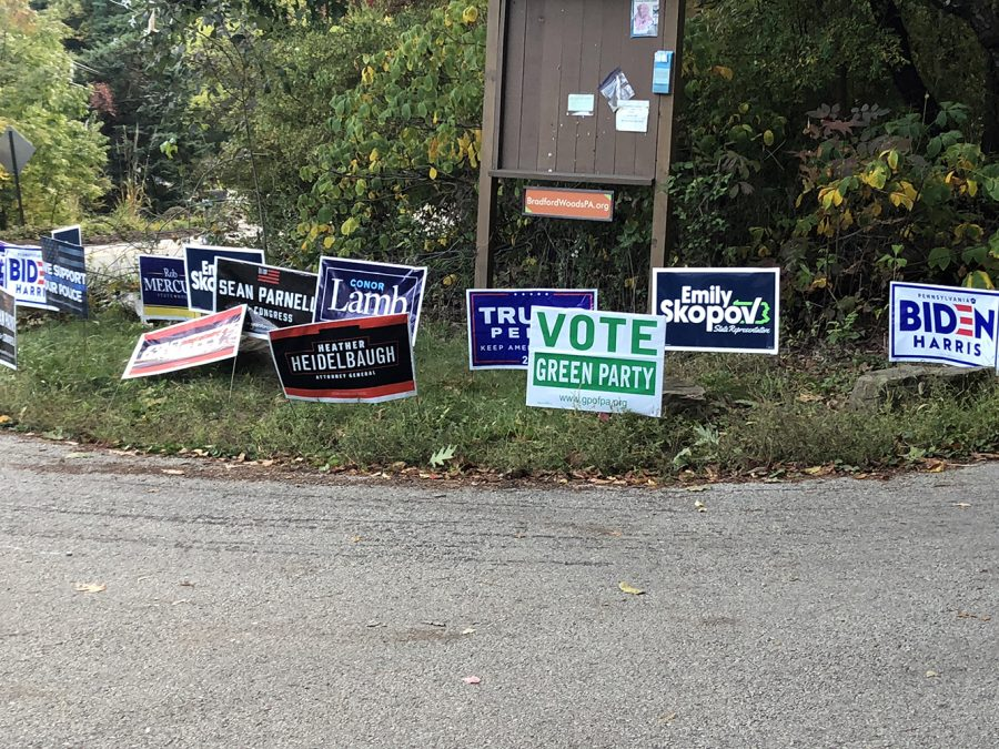 Political signs have been taking over the streets of North Allegheny in preparation for next month's election.