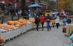 Visiting either Shenot's or Soergel Orchard's pumpkin patches are a staple event for the fall season.