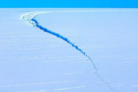 For Antarctica in particular, the heat waves of 2020 caused great damage.