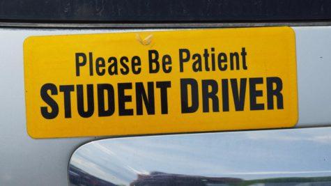 NASH Bumper Sticker